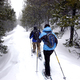 The rural quality of this region lends itself to snowshoe opportunities.