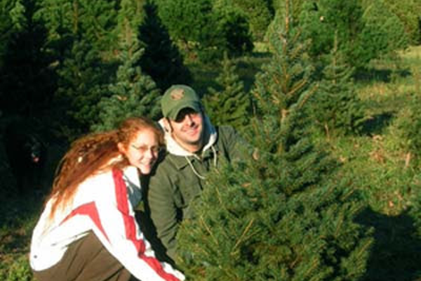 Photo courtesy of djr photography via Rudy's Christmas Tree Farm.