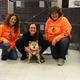 Reuniting Dogs with Families Uses Social Media Searchers to Find Lost Pets - Dec 30 2014 1210PM