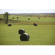 South Dakota hay bales.