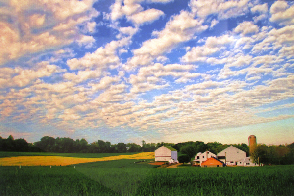 'Summer Clouds' by Anita Bower.