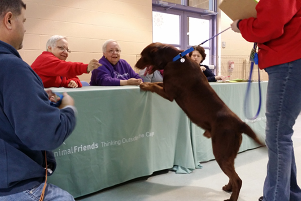 Huxley stops to visit with the ladies at the registration table.