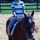 Mathew Halter riding Cajun. Mathew enjoys all aspects of riding, including competing at the Maryland State Special Olympic Equestrian Sports.