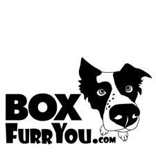 Medium boxfurryoulogo