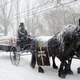 A horse-drawn caisson carries Pinter through the streets of Bordentown to Veterans of Bordentown Cemetery.