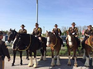 Friends of the Mounted Patrol Springfest and FUNdraiser - start Apr 19 2015 1200PM
