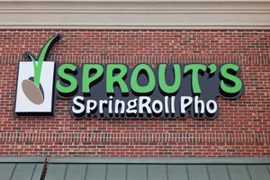 PHO-nomenal Sprouts Springroll  Pho is a Great Departure from the Routine - Mar 16 2015 1256PM