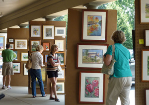 DFVA Summer Art Show - start May 29 2015 1000AM