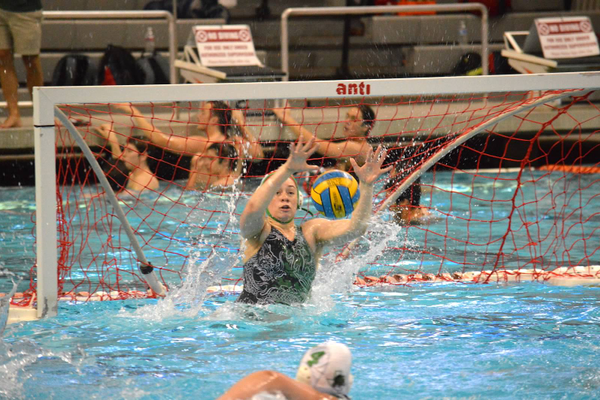 Ana Warner (Sophomore) Goalie.    Named 1st Team All Region and 2nd Team All State