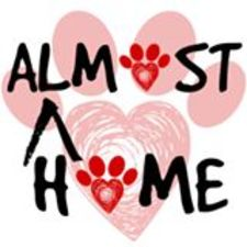 Medium almost 20home 20dog 20rescue 20logo