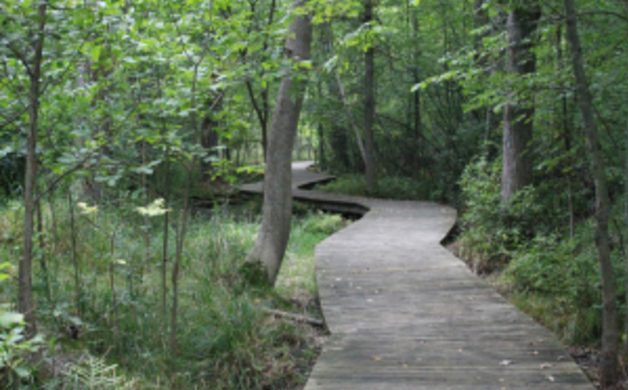 Heckrodt Boardwalk