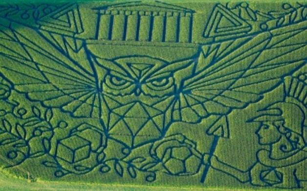 2014_treinen_farm_athenas_owl_maze_final