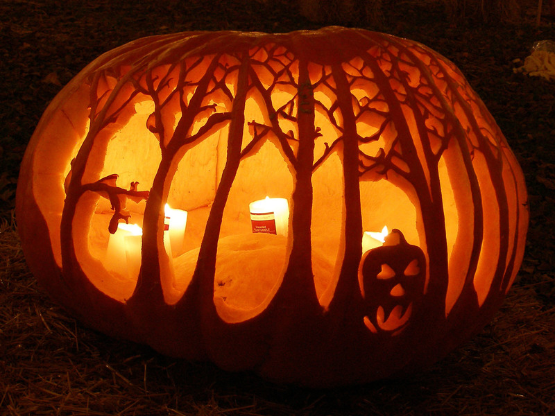 A splendid fall ritual the great pumpkin carve chester