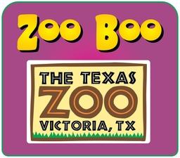 Medium zoo 20boo 20at 20texas 20zoo