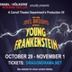Thumb carroll 20theatre 20  20young 20frankenstein 20  20game 20slide