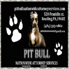 Medium pitbullbizcardcompleteside122223