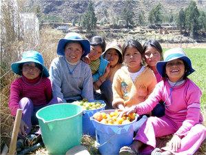 Christmas in Cusco 365 - Nov 17 2015 1149AM