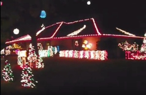 The Lights at Interlochen - start Dec 19 2015 0500PM