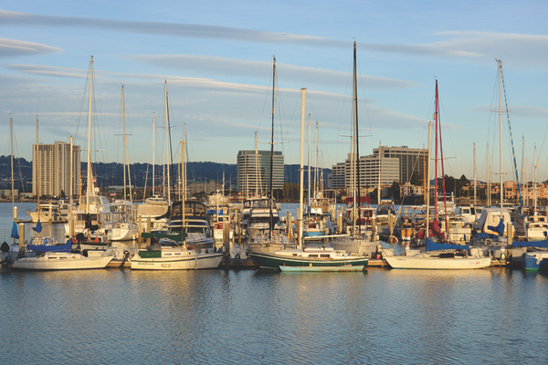 Emeryville Marina, where the Barkissimo bed and breakfast is docked. Photo by April Bolin-Propst.