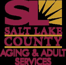 Medium aging adult services vert
