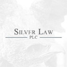 Medium silver law logo 2