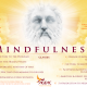 Mindfulness module 2016 feb