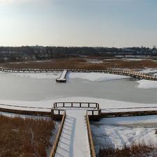 Medium winterwonderland