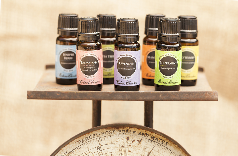 Comparable essential oils shop single oils comparable essential oilsblends edens garden i will Edens garden essential oils coupon