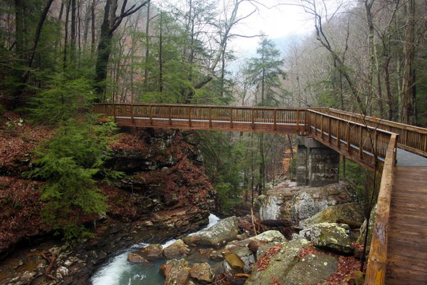 Cloudland Canyon bridge. Photo courtesy of Georgia Department of Natural Resources.