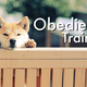 Dog Obedience Classes at the City Park Community Center - Mar 07 2016 0300PM