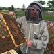 Ron Hazlett works his bees at the Planting Hope with Honey Bees apiary