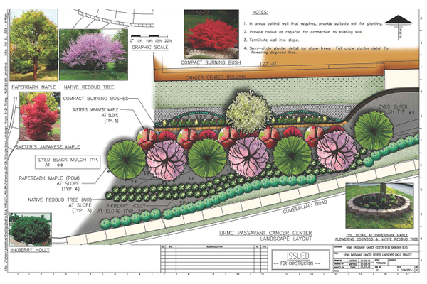 Architectural renderings of the garden