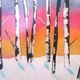 Birch trees by third grader Lauren Meiler