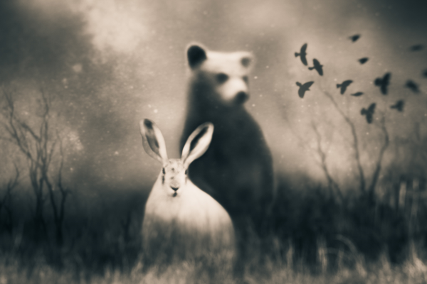 Tami Bone, Imaginary Friends