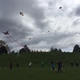 Kites filled the sky at Sugar House Park on a perfect windy day – Natalie Mollinet