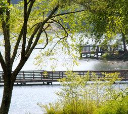 Medium unicoi adventure lodge packages specials lakeside cabin getaway
