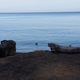 The Beach is Only the Beginning in Erie PA - Jun 30 2016 0856AM
