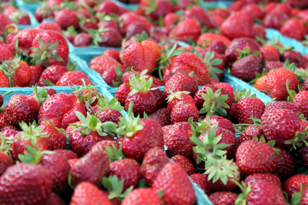 File Photo: Strawberries from Bayfield Fruit Company of Ham Lake at the Maple Grove Farmers Market June 30, 2016.