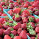 File Photo Strawberries from Bayfield Fruit Company of Ham Lake at the Maple Grove Farmers Market June 30 2016