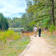 Unicoi State Park Trail. Photo courtesy of  Georgia Department of Natural Resources.