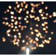 South Jordan's Summerfest celebration ended with a firework show on June 4. – Tori La Rue