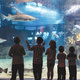 Education meets exploration at Greater Cleveland Aquarium - Aug 01 2016 1201AM
