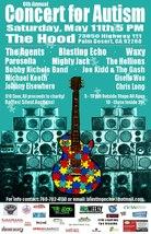 Medium concert for autism