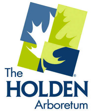 Medium holden 20logo 4color