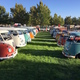 Volkswagen buses sit on the lawn of the Riverton City Park at the 2015 Utah VW Classic. The show is returning to the park for its seventh go-around on Sept. 17. –Tony Brown