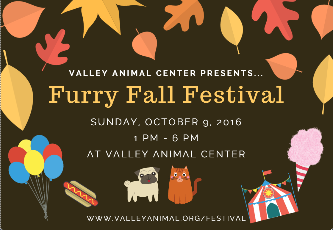 Furry 20fall 20festival