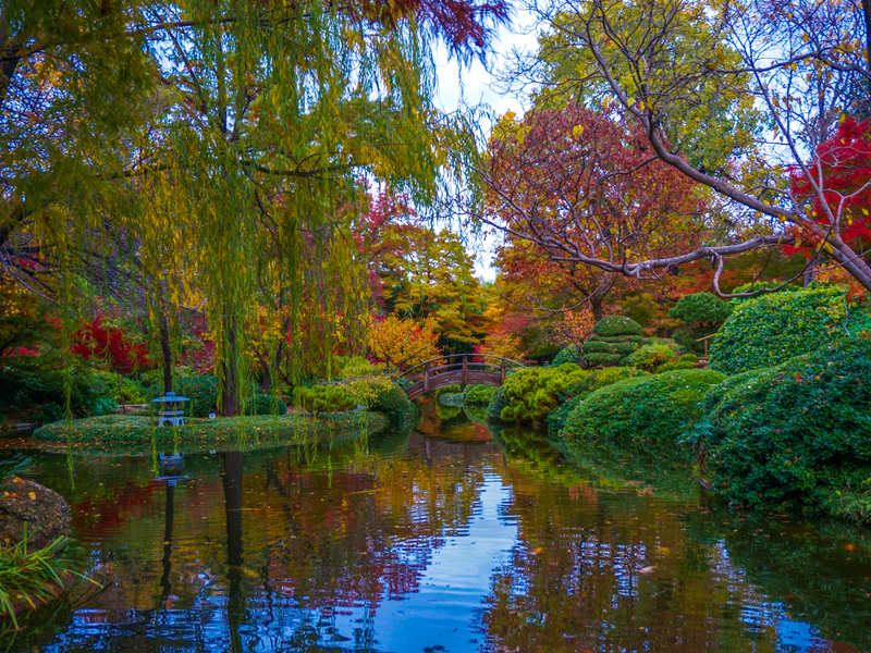 Fort Worth Botanic Garden: 110 Acres, 22 Specialized Gardens ...
