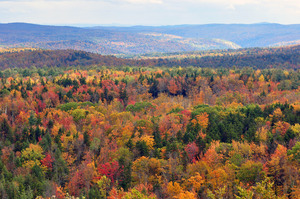 5 Amazing Fall Foliage Hikes in Vermont - 08302016 1201PM