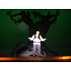 Featured professional actor Stephen Bates as Shrek during Act I.