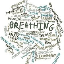 Medium breathing 20sq